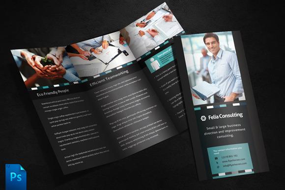 Felia 3 Fold Brochure Template