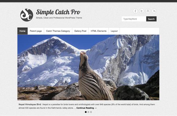 Simple Catch Pro