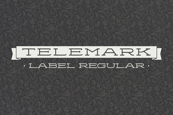 Telemark Label Regular