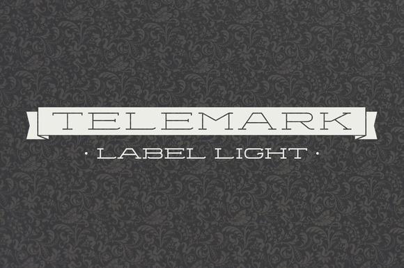 Telemark Label Light