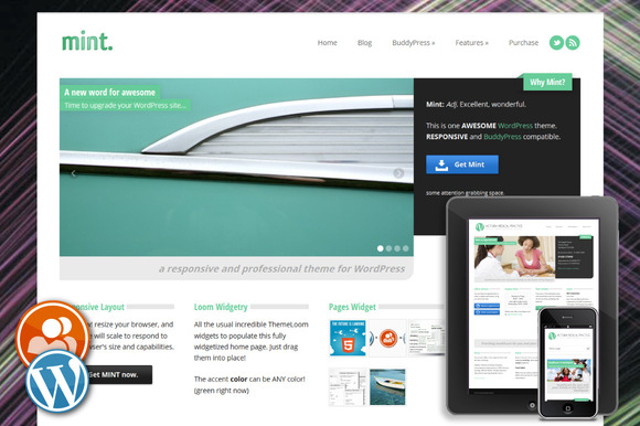 Mint Responsive WordPress Theme