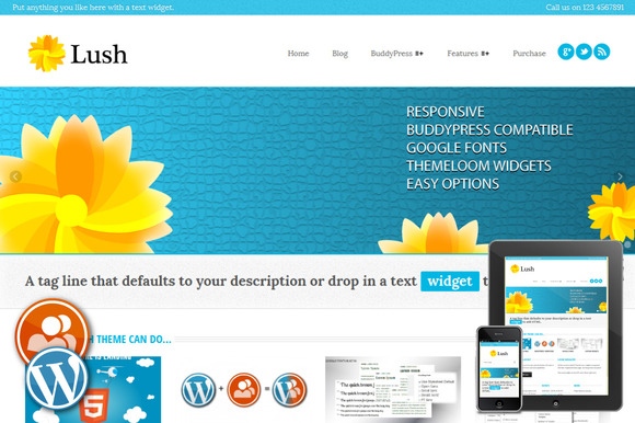 Lush Responsive WordPress Theme