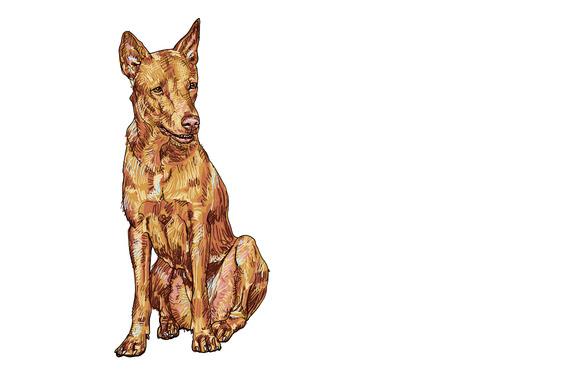 Thai Dog Painting Style