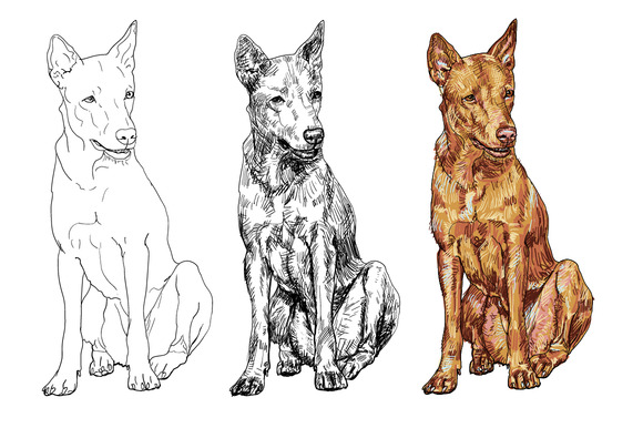 Thai Dog 3 Vector Styles