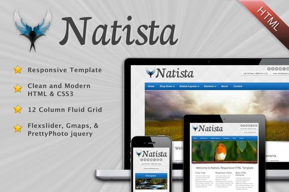 Natista Responsive HTML Template