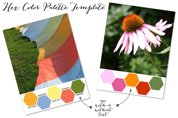 Hex Color Palette Layout For Blogs