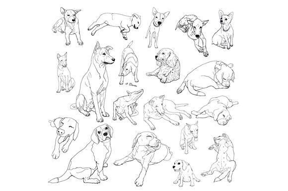 Vestor Set Of Dogs