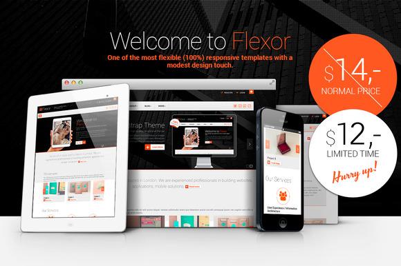 Flexor Responsive HTML5 Theme
