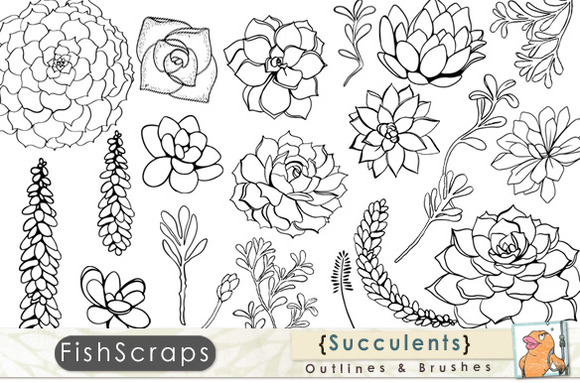 Succulent Outlines Photoshop Brush