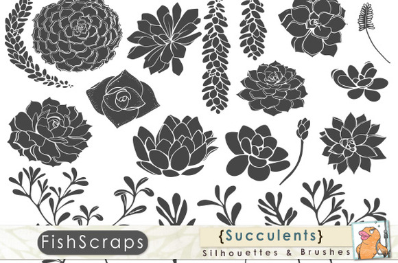 Succulent Silhouette Clip Art
