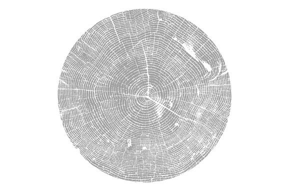 Tree Texture Vector
