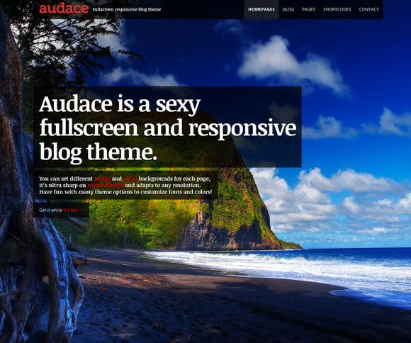 Audace Responsive WordPress Theme