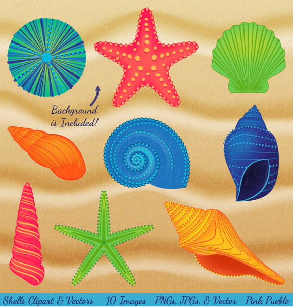 Shells Sand Clipart Vectors