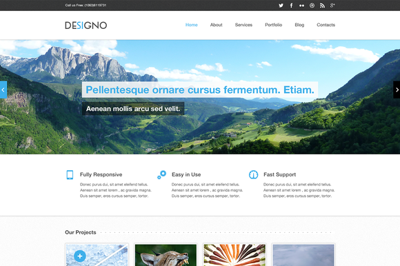Designo Corporate PSD Theme