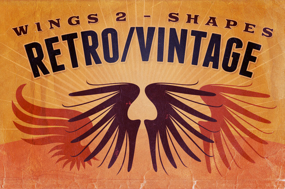 Retro Vintage Shapes Wings 2