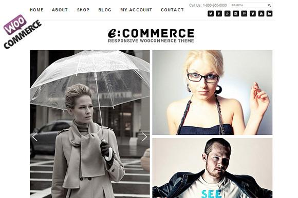 Ecommerce Theme Responsive