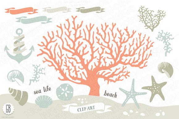 Beach Sea Corals Nautical 03