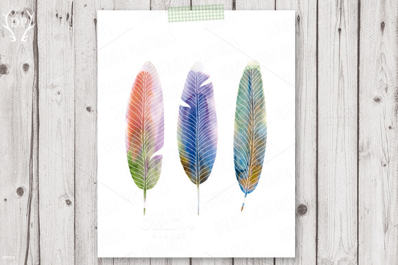 Feathers Watercolor Print Art