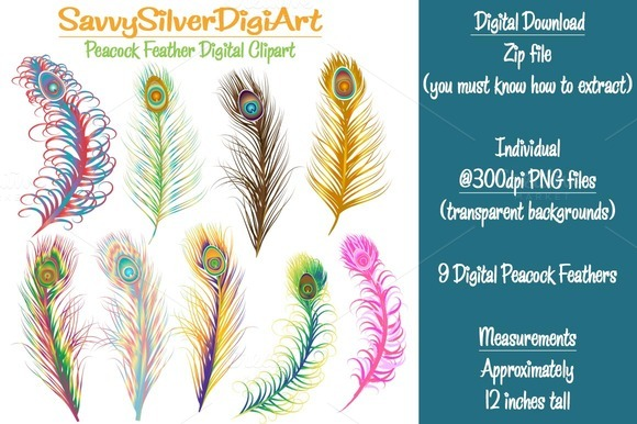 Peacock Tail Feathers 1 Clipart