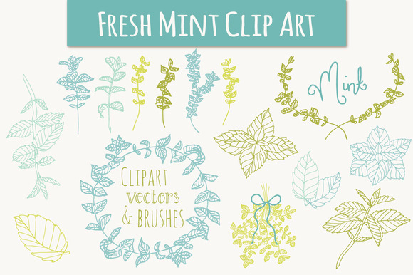 Mint Clip Art Vectors