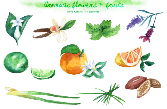 Aromatic Flowers Fruits