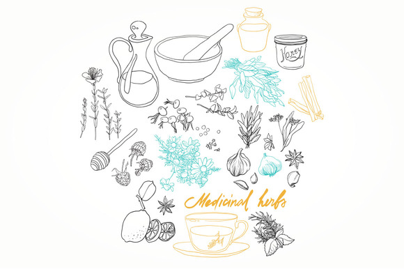Set Of Medicinal Herbs And Patterns