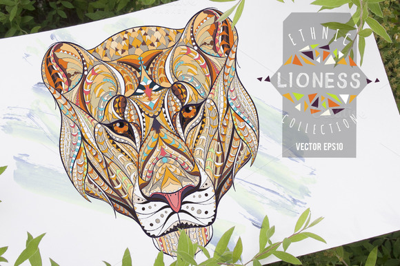Ethnic Collection Lioness
