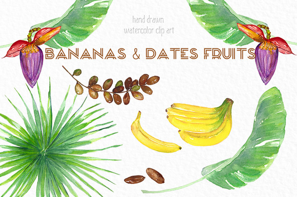 Banana Dates Fruits Watercolor