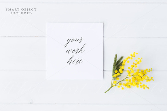Styled Stock Photo Square Card