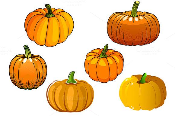 Ripe Orange Pumpkin Vegetables