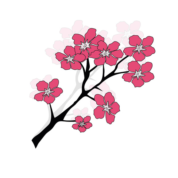 Plum Cherry Blossom Tree