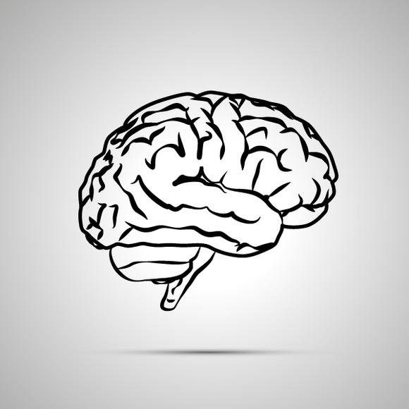 Human Brain Black Vector Icon