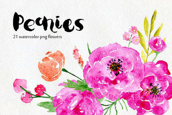 Watercolor Flowers Peony Floral Set