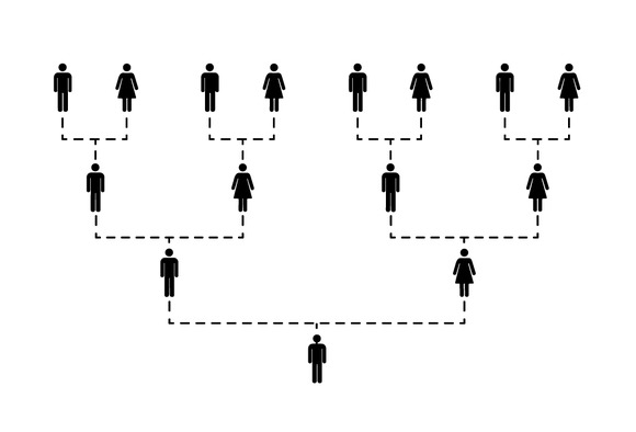 Family Tree Of Several Generations