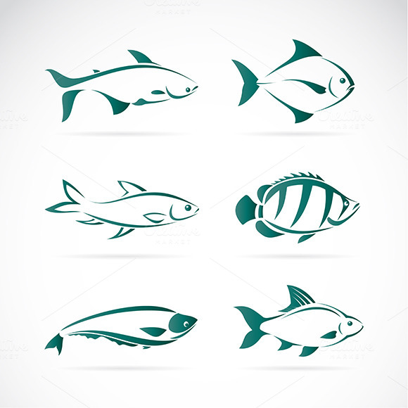 Vector Group Of Fish