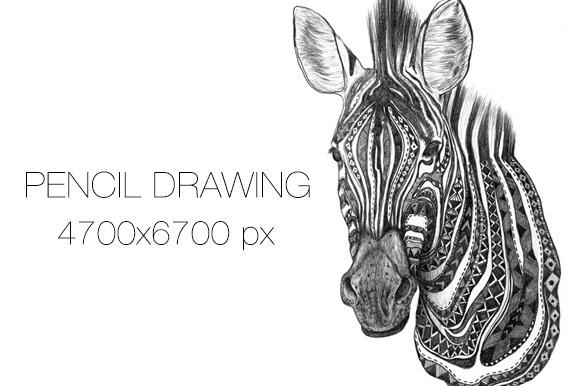 Aztec Zebra Pencil Sketch