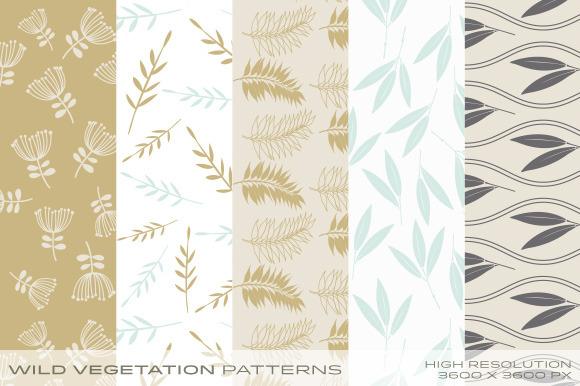 Wild Vegetation Patterns