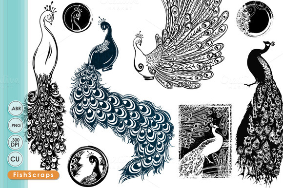 Peacock Digital Stamps Brushes