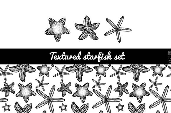 Textured Starfish Set