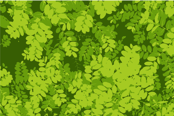 Pattern Of Green Leaf Background-tra