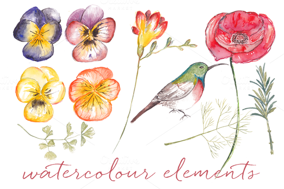 Watercolour Garden Elements