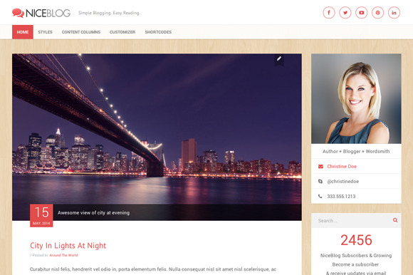 NiceBlog WordPress Blogging Theme