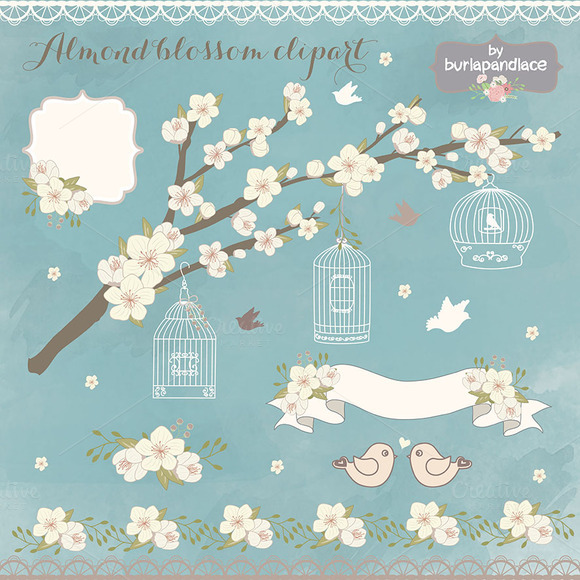 Almond Blassoom Clipart