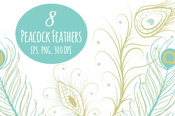 8 Peacock Feathers In EPS And PNG