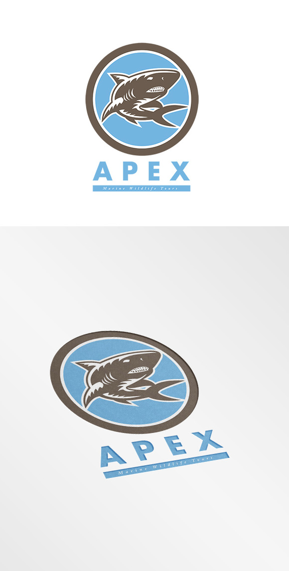 Apex Marine Wildlife Tours Logo