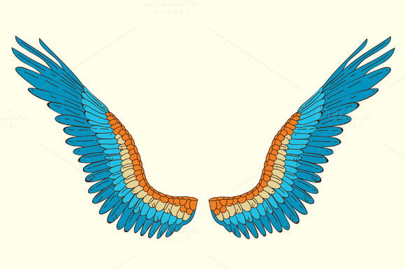Vector Hand Drawn Wings