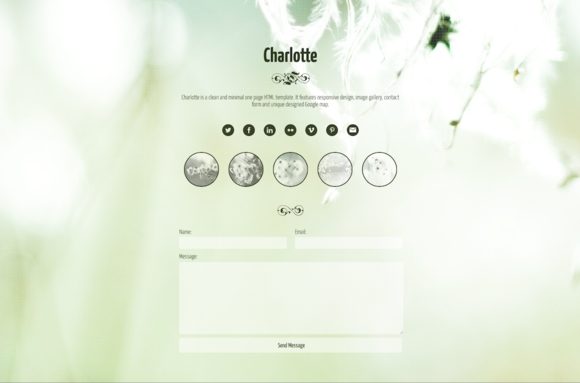 Charlotte HTML One Page Template