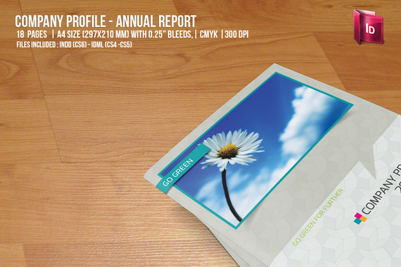 Company Profile Annual Report
