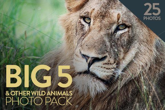 Big 5 Wild Animals Pack