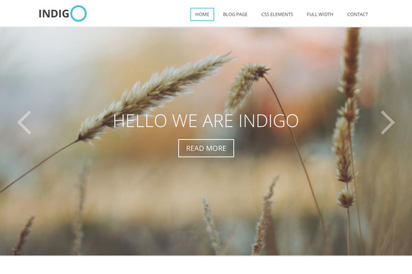 Indigo Multi-Purpose Theme